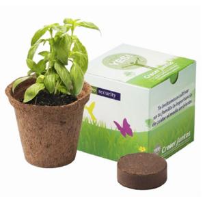 Kit Caja Personalizada L
